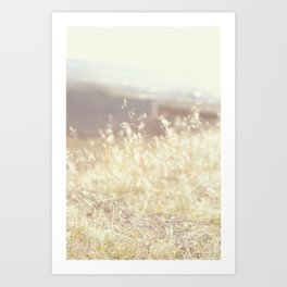 Vintage Wildflowers Art Print