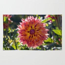 Dahlia / In The Garden / 1 Rug