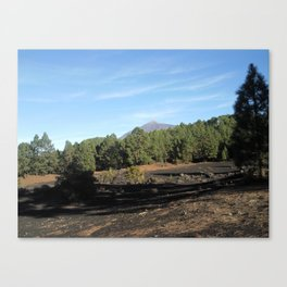 el Teide - Tenerifa Canvas Print