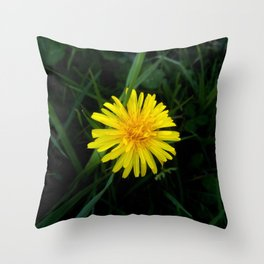 Orange Dandelion 4 -diente de leon Throw Pillow