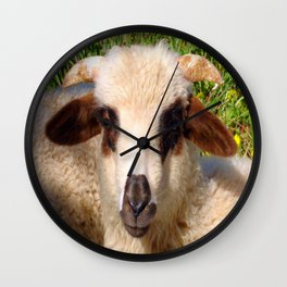 Sheep Portrait Close Up Wall Clock