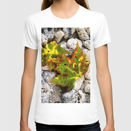 Leaves in Gray T-shirt