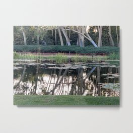Pond reflection Metal Print