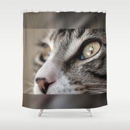 Macro Cat Shower Curtain