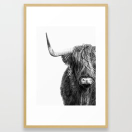 Highland Cow Portrait - Black and White Framed Art Print