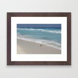 Carribean sea 8 Framed Art Print