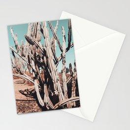 Desert Cactus Photography | Cacti Nature Stationery Cards