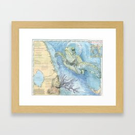 West Palm Beach Turtle Framed Art Print