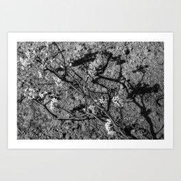 Wabi Sabi - light and shadow Art Print