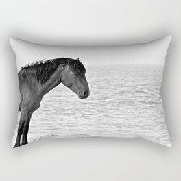 Assateague Pony Rectangular Pillow