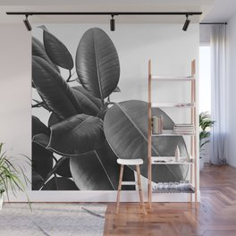 Ficus Elastica #21 #BlackAndWhite #foliage #decor #art #society6 Wall Mural