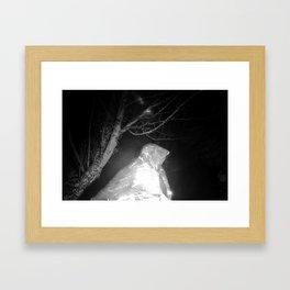 Nala/Olympia: A Case Study - Dream 03 Framed Art Print