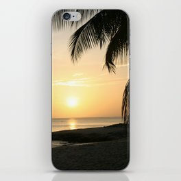 Late Afternoon iPhone Skin
