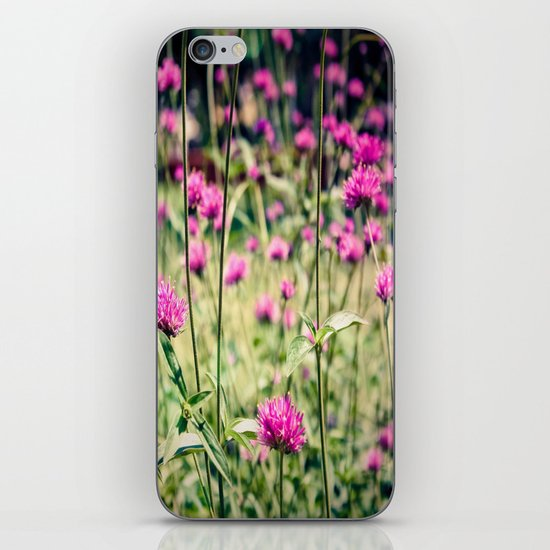 Pink Thistle Flowers in Field iPhone Skin
