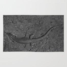 Haria Lizard 3 bw Rug