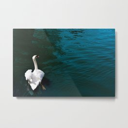 The Swan in the Moat Metal Print