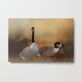 Geese Bedding Down At Sunset Metal Print