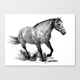 Horse Running, Pencil Drawing, Equine Art Canvas Print