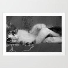 Cute Cat BW Art Print