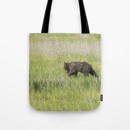 Young Brown Bear Cub, No. 1 Tote Bag