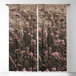 Flower Photography by Anita Austvika Blackout Curtain