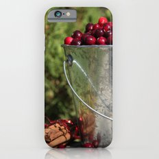 Berries and Spice iPhone 6s Slim Case