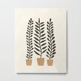 Potted Ferns - Terracotta, Black Metal Print