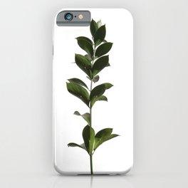 Tropical Leaves | Green | Minimalist Plant Art iPhone Case