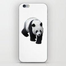 Walking Panda iPhone & iPod Skin