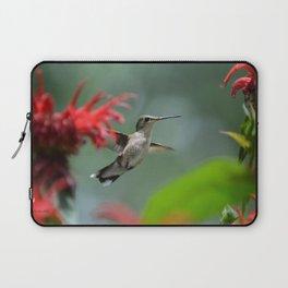 Hummingbird Flying II Laptop Sleeve