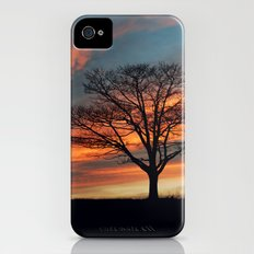 Branching Silhouette iPhone (4, 4s) Slim Case
