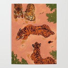 Tiger Beach Poster
