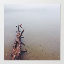 Log in Water Canvas Print