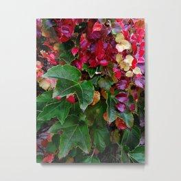 Ivy #2 Metal Print