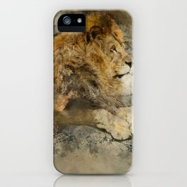 Lion on the rocks iPhone Case