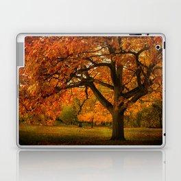 Red Oak Tree Laptop & iPad Skin