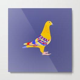 Colombian pigeon Metal Print