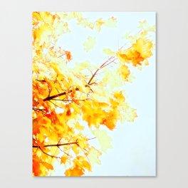 Yellow Maple leaves, Autumn Unfolds Canvas Print