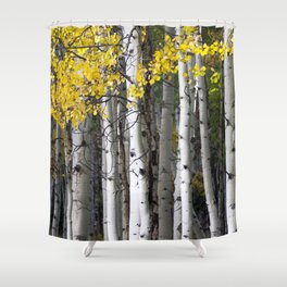 Yellow, Black, and White // Aspen Trees in Crested Butte Shower Curtain