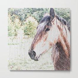 Sketchy Horse Metal Print