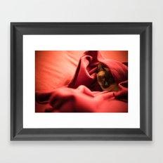Snug Framed Art Print