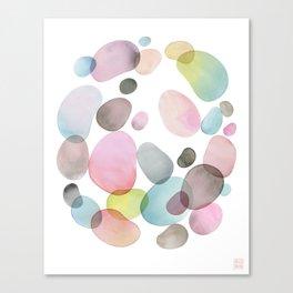 Pebble Collection Canvas Print