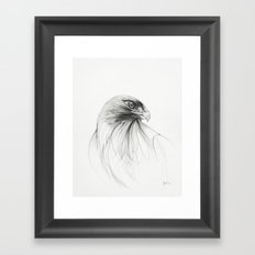 redtailed hawk Framed Art Print
