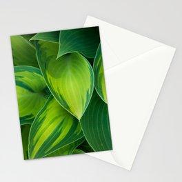 Hosta Camouflage Stationery Cards