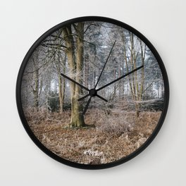 Woodland covered in frost. Norfolk, UK. Wall Clock