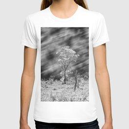 Tree Black White Long Exposure T-shirt