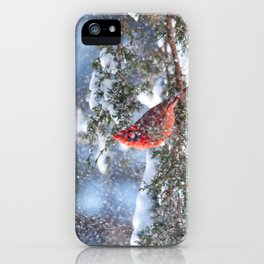 Let It Snow (Northern Cardinal) iPhone Case