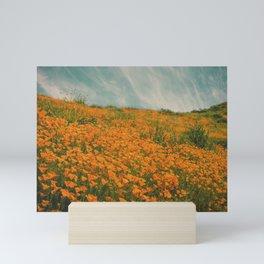 California Poppies 016 Mini Art Print