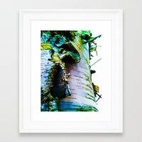birch Framed Art Prints featuring birch by Jeni Decker