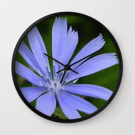 Cornflower Blue Wall Clock